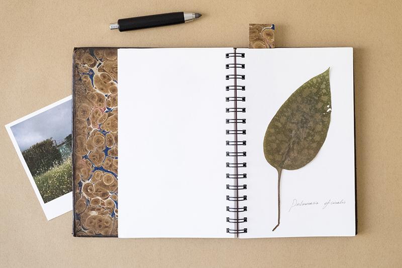 llibre_moreto_blog